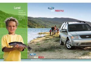 2007 Ford Freestyle – Dealer